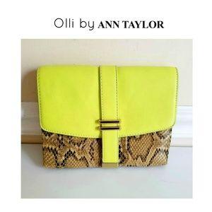 Olli by Ann Taylor